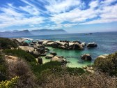 Boulders Beach with penguins - Cape Town, South Africa
